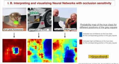 Stanford CS230: Deep Learning | Autumn 2018 | Lecture 7 - Interpretability of Neural Network