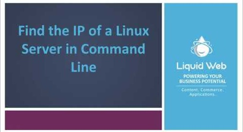 Find the IP of a Linux Server in Command Line