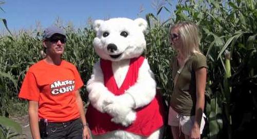 Toba visits A Maze in Corn