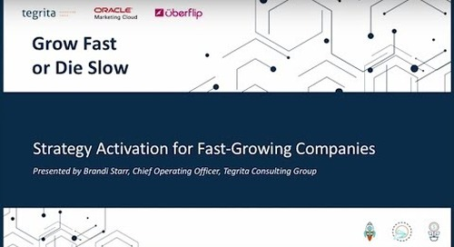 Grow Fast or Die Slow: Strategy Activation for Fast-Growing Technology Companies