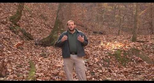 Steele Creek Explorer - Fall Into Winter