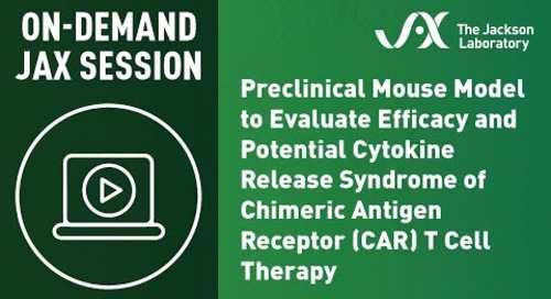 Preclinical Mouse Model to Evaluate Efficacy and Potential CRS of CAR T Cell Therapy