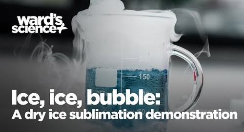 Ice, Ice, Bubble: A Dry Ice Sublimation Demonstration