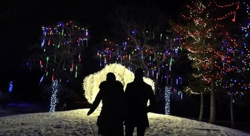 5 reasons we love the new Zoo Lights Festival at Assiniboine Park Zoo