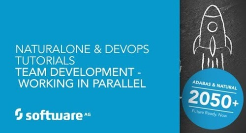 NaturalONE & DevOps Tutorials -Team Development - Working in Parallel