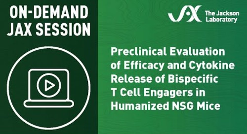 Preclinical Evaluation of Efficacy and Cytokine Release of Bispecific T Cell Engagers in Hu-NSG Mice