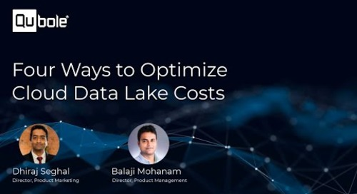 Four Ways To Optimize Cloud Data Lake Cost