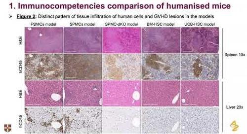 Predicting CRS using humanized mice