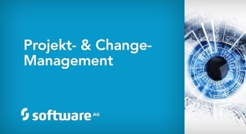 Projekt- & Change-Management