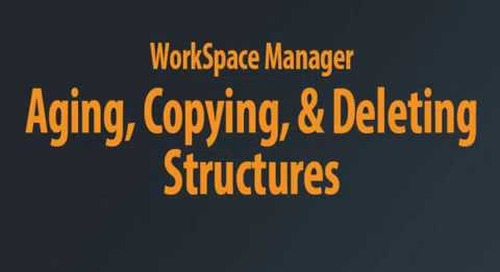 WorkSpace Manager - Aging Chaptered