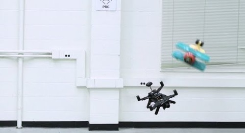 EVDodge: Embodied AI for High-Speed Dodging on a quadrotor using event cameras