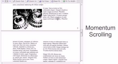 Using the DotImage Web Document Viewer