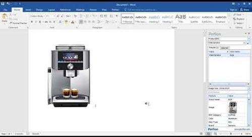 Perfion Microsoft Office Plug-In | Western Computer