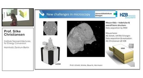 ZEISS EMBL3D Talk: Correlative Microscopy-Spectroscopy Studies, by Silke Christiansen