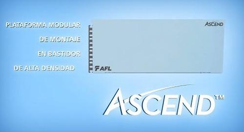 AFL presenta ASCEND™
