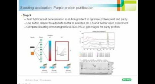 Optimization to Automation: The Advantages of Multidimensional (Multi-D) Chromatography