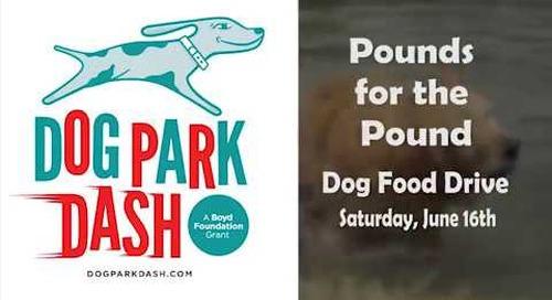 Dog Park Dash