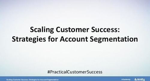 Scaling Customer Success: Strategies for Account Segmentation