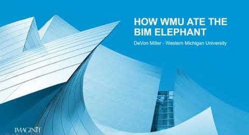 How to Eat the BIM Elephant