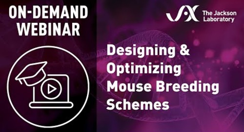 Designing & Optimizing Mouse Breeding Schemes