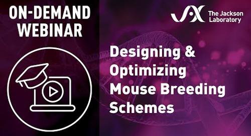 Designing & Optimizing Mouse Breeding Schemes