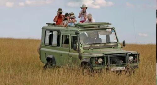 Webinar: African Safari