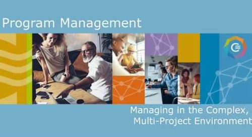 Managing in the Complex, Multi-Project Environment