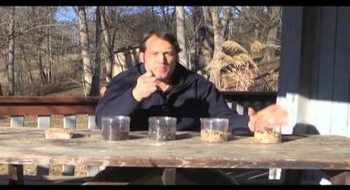 Steele Creek Explorer - Bird Feeding