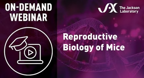 Reproductive Biology of Mice