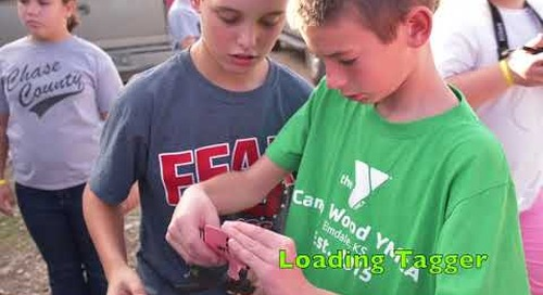 Learning With Cattle - CCES Project-Based Learning