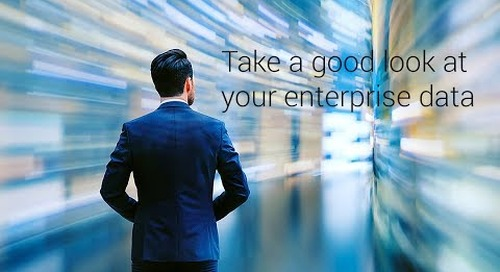 Take a GOOD LOOK at your enterprise data