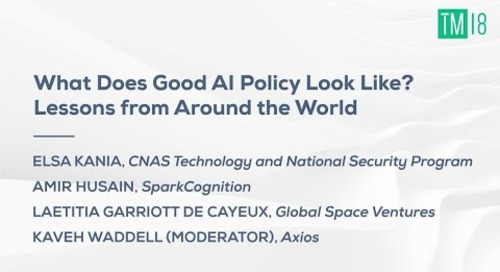 What Does Good AI Policy Look Like? Lessons from Around the World - Time Machine 2018