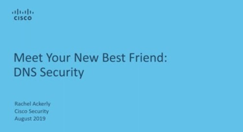 Meet Your New Best Friend: DNS Security