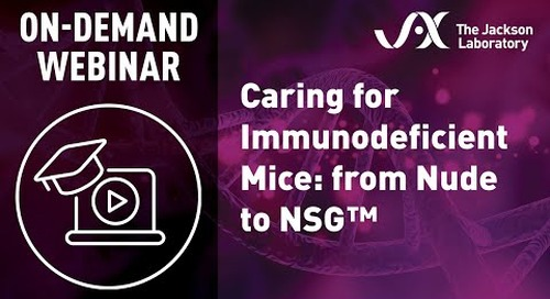 Caring for Immunodeficient Mice: From Nude to NSG™