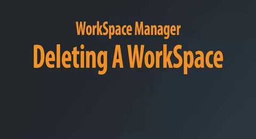 WorkSpace Manager - Deleting A Workspace