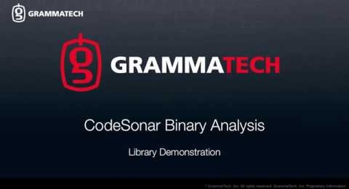CodeSonar Binary Analysis: Library Demonstration