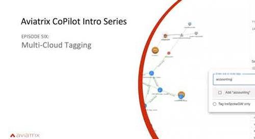E6 Aviatrix CoPilot Tagging