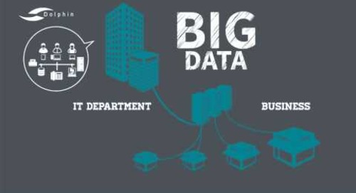 Managing BIG DATA with Dolphin Enterprise Solutions Corporation