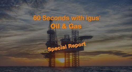 60 seconds with igus® - Oil & Gas - Special Report - e-loop