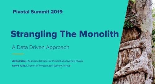 Sydney - Strangling the Monolith - David Julia & Amjad Sidqi