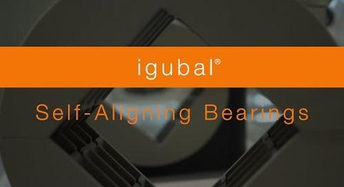 Overview - igubal® self aligning bearings