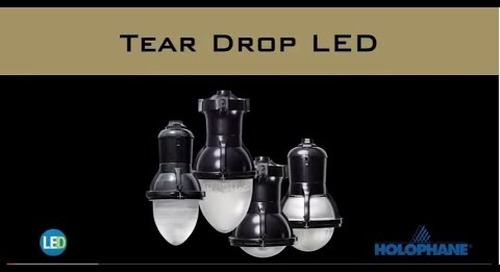 Tear Drop LED II Luminaire