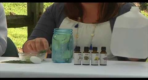 DIY Today Episode 1: Mosquito Remedies Parts 1-4