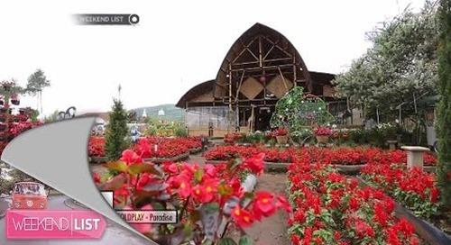 Weekend List - Kebun Begonia, Lembang Bandung