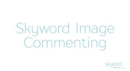 Skyword Image Commenting