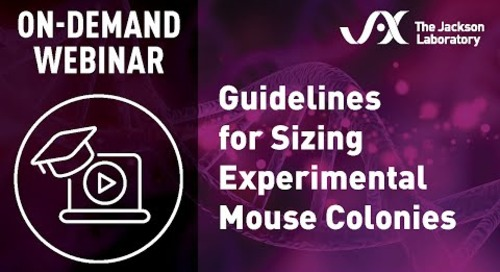 Guidelines for Sizing Experimental Mouse Colonies