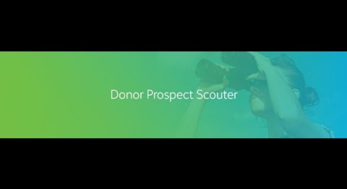 Introduction to Donor Prospect Scouter