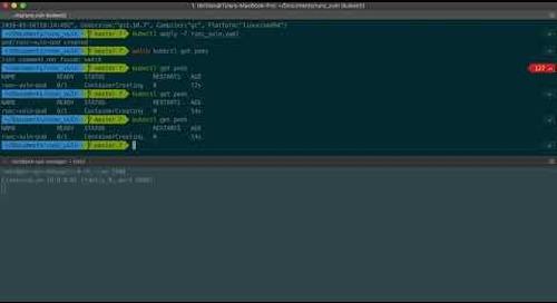 CVE-2019-5736 on PKS 1.3.3
