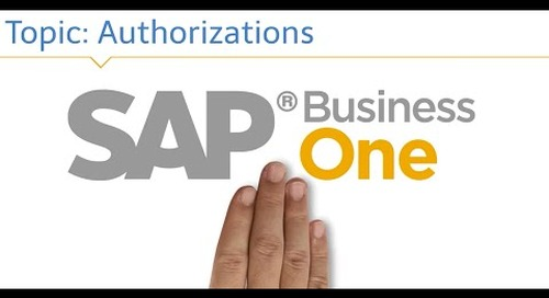SAP Business One Authorizations