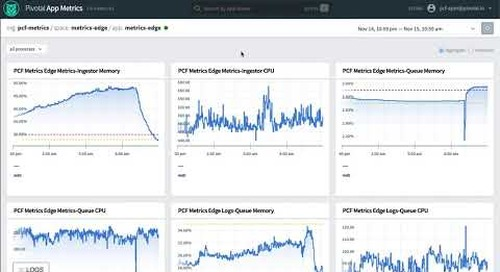 Observing Platform Metrics Along Side Application Metrics